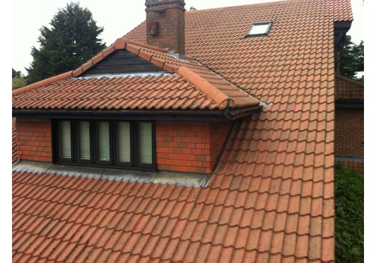 Roof Clean and Biocide Treatment Oxford