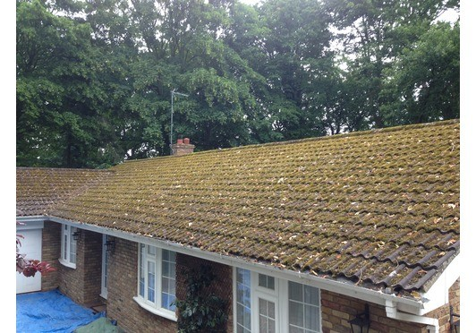 Now is the time to clean your roof as moss on a roof can cause damage to roof tiles