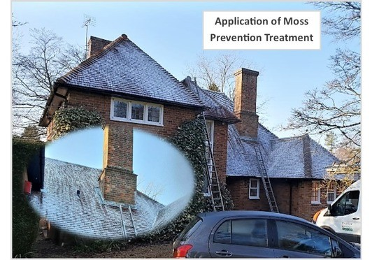 Moss Treatment for Roofs